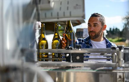 Wine Jobs - Man Bottling